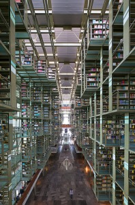 Click for full image of Vasconcelos Library